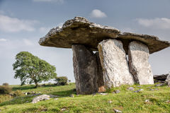 Poulnabrone dolmen with oak tree in background. 5,000 year old portal tomb in the karst limestone Burren area of County Clare, Ireland Stock Images