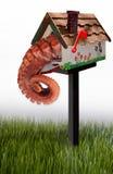 Poulpe dans la boîte aux lettres de jardin Photos libres de droits