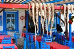 Poulpe grec traditionnel de nourriture séchant au soleil Photographie stock libre de droits