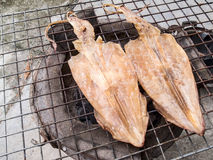 Poulpe grillé Photo stock
