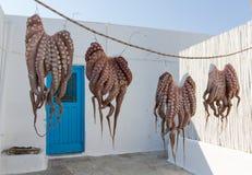 Poulpes séchant au soleil en île grecque image stock