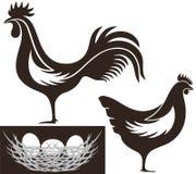 poultry Fotografía de archivo libre de regalías