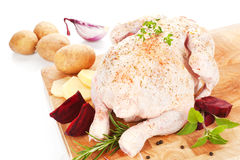 Poultry background. Delicious raw chicken. Stock Images