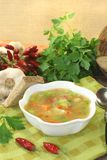 Poultry consomme with smooth parsley. Poultry consomme with greens and smooth parsley Stock Photography