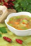 Poultry consomme soup with green. Smooth parsley and bread Royalty Free Stock Photography