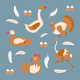 Poultry farm banner Royalty Free Stock Photo