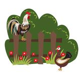 Poultry on the farm stock illustration