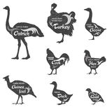 Poultry icon set. Poultry silhouette collection for groceries, meat stores and advertising. Vector livestock labels design Stock Photo