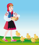 A poultry-maid feeds chickens. A poultry-maid feeds with little chickens porridge Stock Image