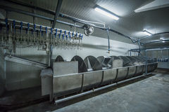 Poultry processing plant. Industrial plant for processing poultry Royalty Free Stock Photo