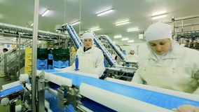 Poultry processing plant line stock video footage