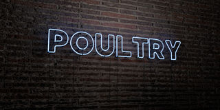 POULTRY -Realistic Neon Sign on Brick Wall background - 3D rendered royalty free stock image. Can be used for online banner ads and direct mailers Royalty Free Stock Photos