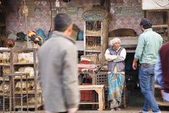 Poultry store, Delhi, India Stock Photos