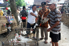 Poultry. Traders selling poultry in an animal market in Sukoharjo, Central Java, Indonesia Royalty Free Stock Photos