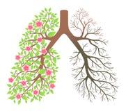 Poumons. Effet après le tabagisme et la maladie illustration de vecteur