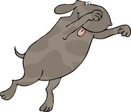 Pouncing dog. This illustration depicts a pouncing dog Stock Photo
