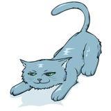 Pouncing kitten Stock Images