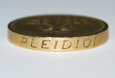 Pound. Macro of a pound coin