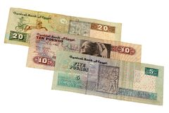 Pound bill of Egypt Royalty Free Stock Photography
