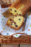 Pound cake with dried cranberry Stock Images