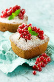 Pound cakes with red currant Royalty Free Stock Photos