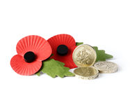 Pound Coins and Remembrance Poppies. Studio macro of two remembrance poppies with UK pound coins against a white background. Copy space Stock Photo