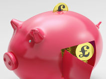 Pound In Piggy Shows Currency And Investment Royalty Free Stock Image