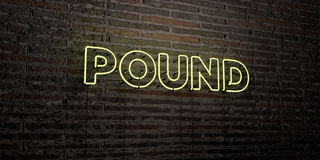 POUND -Realistic Neon Sign on Brick Wall background - 3D rendered royalty free stock image. Can be used for online banner ads and direct mailers Stock Photo