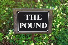 The pound street sign on flower background stock images