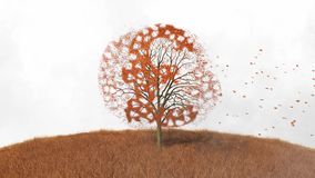 Pound symbol in a tree, falling leaves. Footage of pound symbol in a tree, falling leaves stock footage