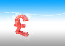 Pound in water Royalty Free Stock Photos