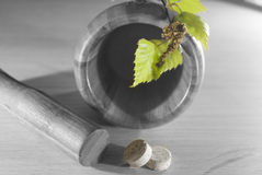 Pounder with black and white with green leaves and tablets Stock Image