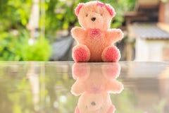 Poupée d'ours Photo stock