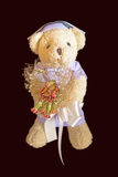 Poupée d'ours mignonne Images libres de droits