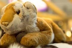 Poupée de lion en vente Images libres de droits