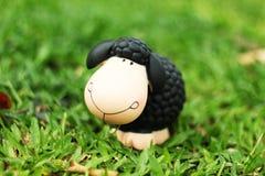 Poupée de moutons noirs pour la maison et le jardin photographie stock libre de droits