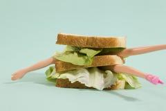 Poupée de sandwich Image stock