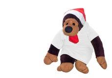 Poupée de singe dans la suite de chrismas Image stock