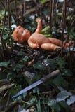 Poupée effrayante Mauvais traitement à enfant Scène criminelle image stock