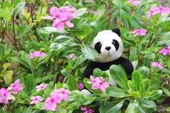 Poupée noire et blanche de panda photographie stock libre de droits