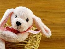 Poupée rose de chien dans le panier sur le fond en bois Images stock