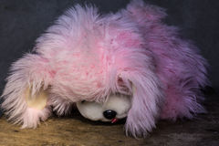 Poupée toujours rose mignonne de brun de chien de la vie Photos libres de droits