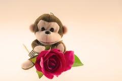 Poupées de singe avec des roses de l'amour Photos stock