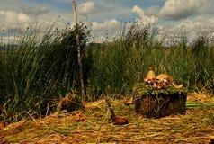 Poupées en monde d'un roseau Images stock