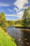 Poupée de gorge, Cairngorms, Ecosse Image libre de droits