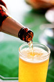 Pour beer. For customer in the restaurant Stock Images