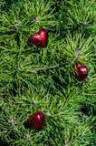 Pour l'amour de Noël Photo libre de droits