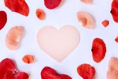 Pour l'amour tendre de sentiments Images libres de droits