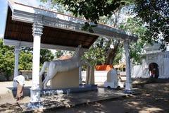 Pour les au sol de temple Image libre de droits
