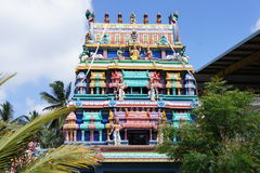 Pour les au sol de temple Photos libres de droits